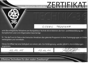 Zert-T36
